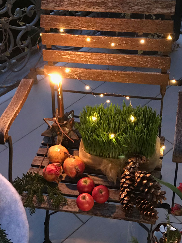 garden chair featuring fresh sabzeh illuminated by Christmas tree lights