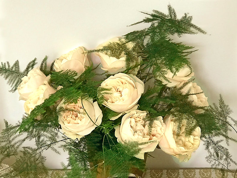 champagne-coloured roses