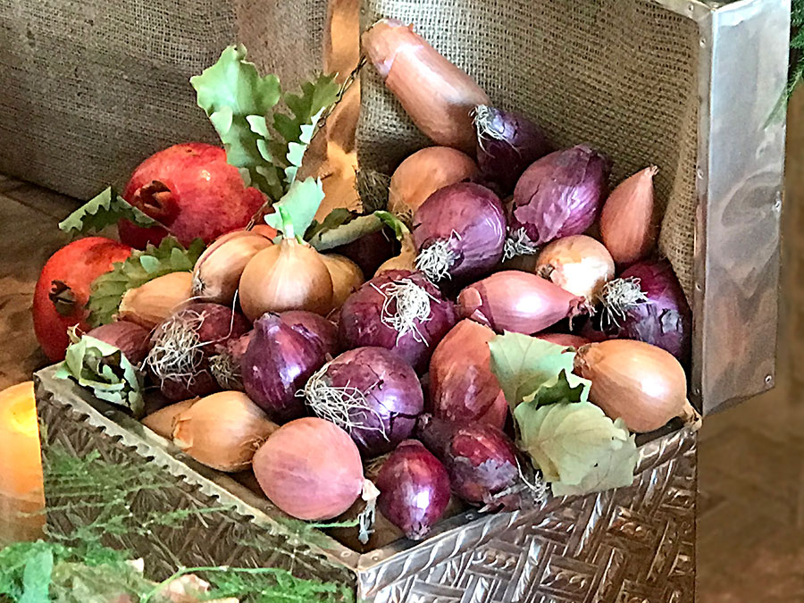silver box with onions and shallots