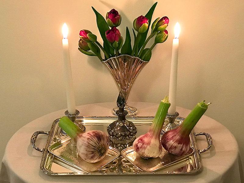 display of garlic bulbs, vinegar, flames, tulips