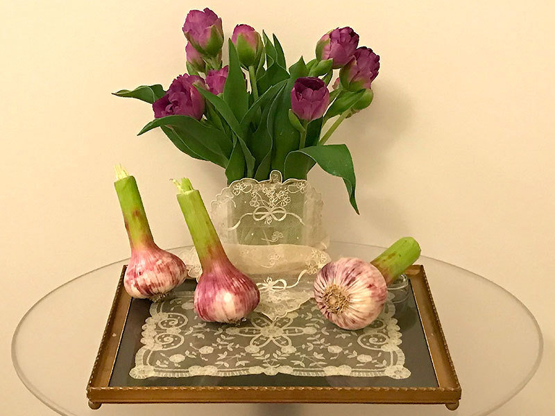 glass table with lace, tulips, and garlic